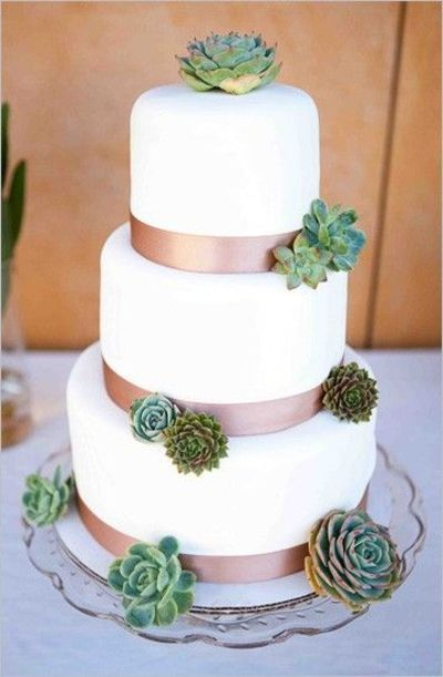 White Ivory Cake With Brown Ribbon And Succulents