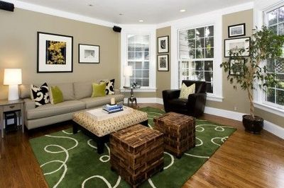 Green Accents Living Room