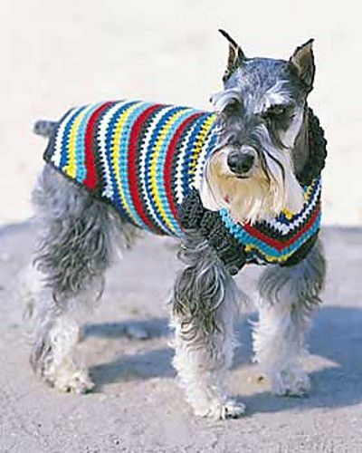 free ravelry pattern crochet dog sweater
