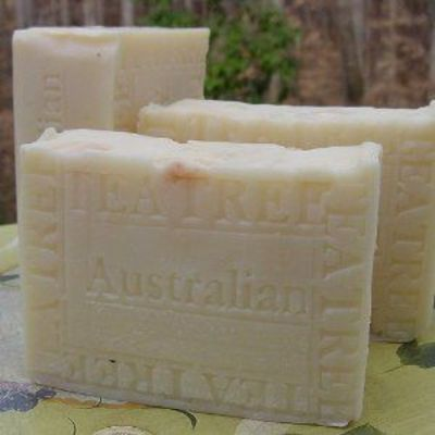 Australian Tea Tree with Cocoa Butter Organic Soap! $10.00