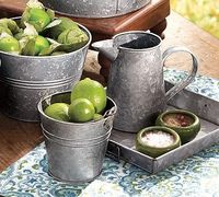 Galvanized bucket lime