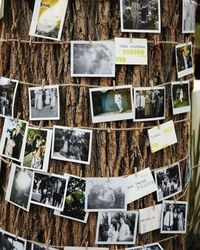 love this idea, maybe by the guest book table?