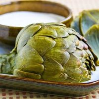 Artichokes, and how to cook them, on