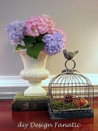Hydrangeas in vase, books, birdcage.