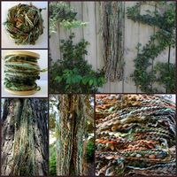 Had to share this! Enchanted Forest Hand Spun Yarn.