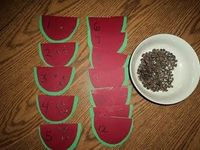 Watermelon seed counting