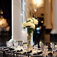 Tall Hydrangea and Curly Willow Centerpieces with Navy Napkins