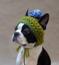oh, my hooch needs this #crochet