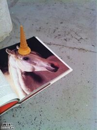 How To Make a Unicorn