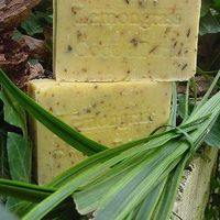Lemon Grass + Lemon Essential Oil Organic Soap! Yumm $10.00