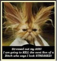 stressed out !!!